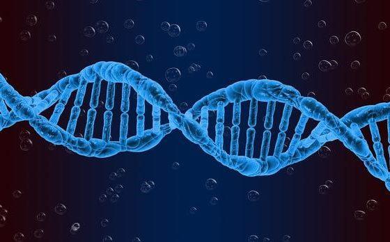 Ученые открыли новые генные мутации, которые позволят лечить мужское бесплодие