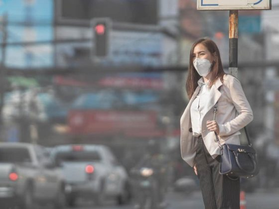 Air pollution may affect women's fertility and decrease number of eggs